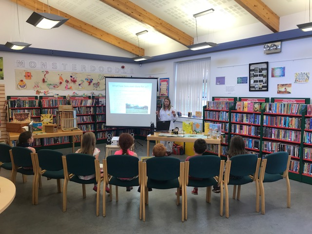 Busy as bees Dunboyne Library group