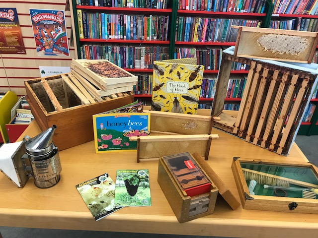 Busy as bees Dunboyne Library paraphenalia
