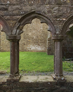View of the decorative stone work at Bective Abbey