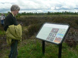 Girley Bog Walk 2