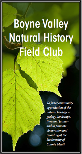 Boyne Valley Natural History Field Club