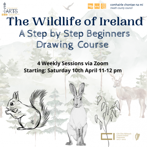 Wildlife of Ireland Drawing Course