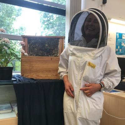 Busy as Bees - Dunboyne Library